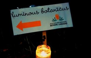 Candle lit Luminous Botanicus sign leading showing the way